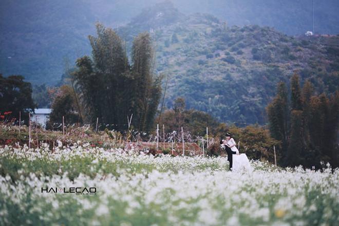 Những điểm chụp ảnh cưới đẹp như mơ ở Việt Nam - Ảnh 14