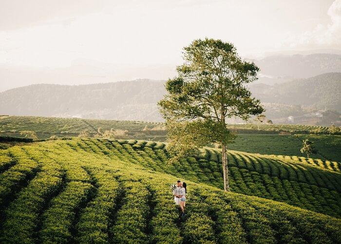 Gợi ý địa điểm chụp ảnh cưới lãng mạn cho các cặp đôi miền Nam - Hình ảnh 10
