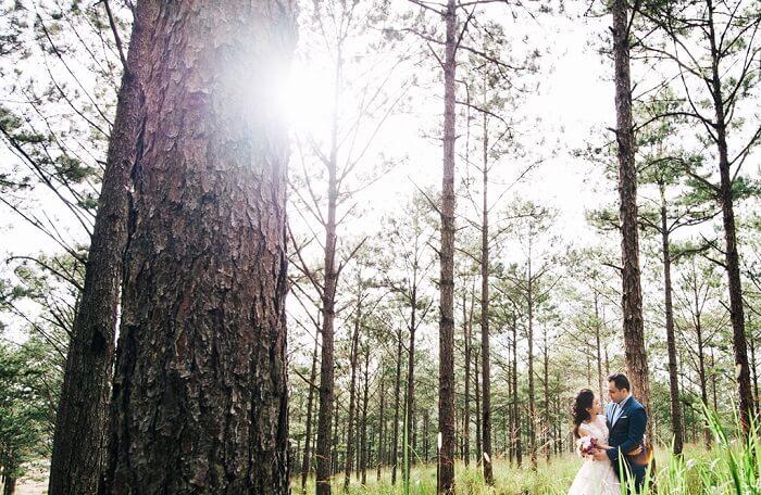 Gợi ý địa điểm chụp ảnh cưới lãng mạn cho các cặp đôi miền Nam - Hình ảnh 18