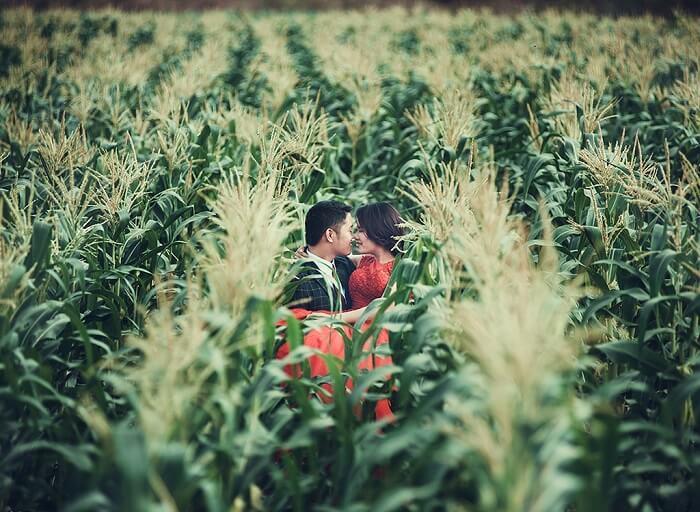 Gợi ý địa điểm chụp ảnh cưới lãng mạn cho các cặp đôi miền Nam - Hình ảnh 29