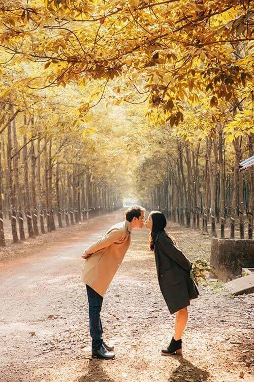 Ảnh cưới mùa lá vàng Bình Dương ngỡ là cảnh sắc thu Hàn Quốc - hình ảnh 5