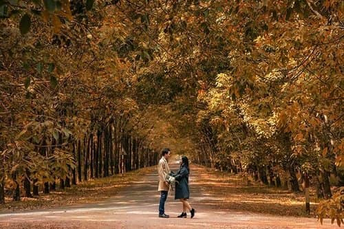 Ảnh cưới mùa lá vàng Bình Dương ngỡ là cảnh sắc thu Hàn Quốc - hình ảnh 6