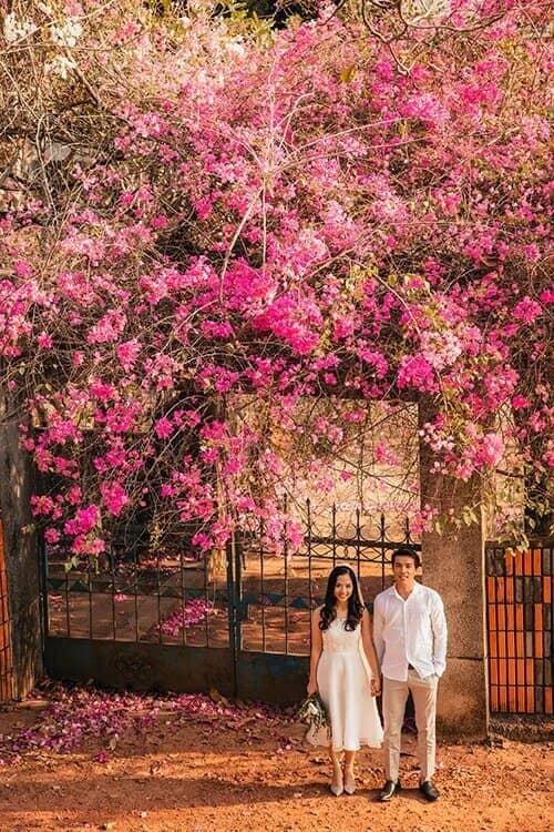 Ảnh cưới mùa lá vàng Bình Dương ngỡ là cảnh sắc thu Hàn Quốc - hình ảnh 8