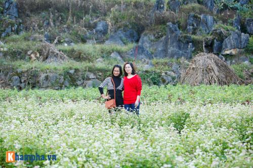 Lên Hà Giang chụp ảnh cưới cùng tam giác mạch - hình ảnh 16