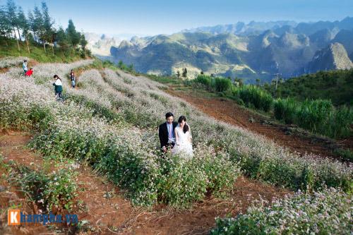 Lên Hà Giang chụp ảnh cưới cùng tam giác mạch - hình ảnh 4