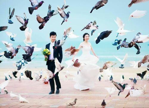 Ngất ngây với địa điểm chụp ảnh cưới đẹp ngỡ như trời Tây - hình ảnh 9