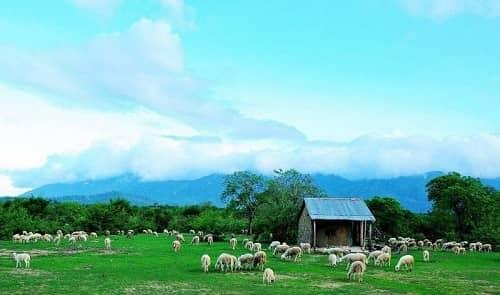 Những địa điểm chụp ảnh cưới đẹp nhất tại Ninh Thuận Phan Rang - hình ảnh 2