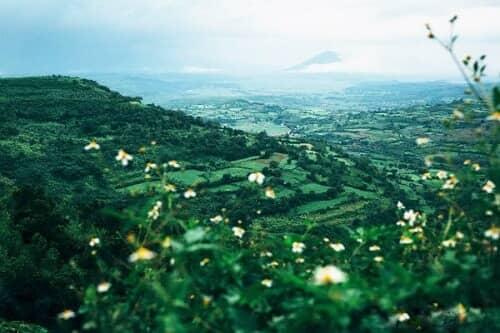 Những địa điểm chụp ảnh cưới đẹp nhất tại Phú Yên - hình ảnh 6