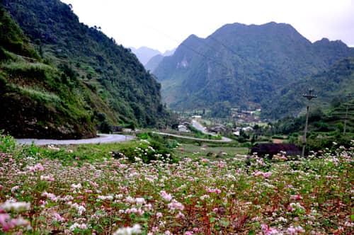 Những địa điểm chụp ảnh cưới đẹp nhất tại Hà Giang - hình ảnh 1