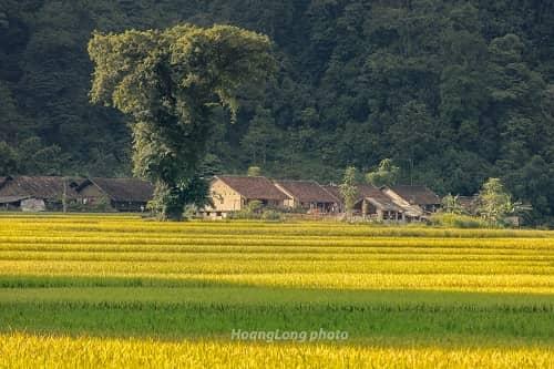 Những địa điểm chụp ảnh cưới đẹp nhất tại Cao Bằng - hình ảnh 4