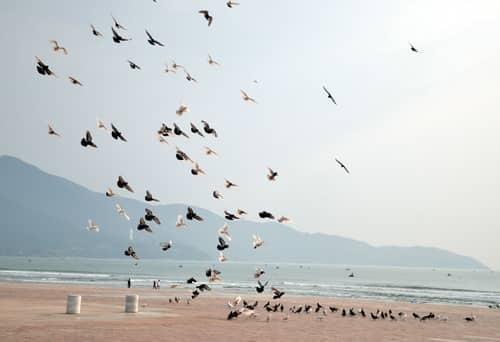Những địa điểm chụp ảnh cưới đẹp nhất tại Đà Nẵng - hình ảnh 4