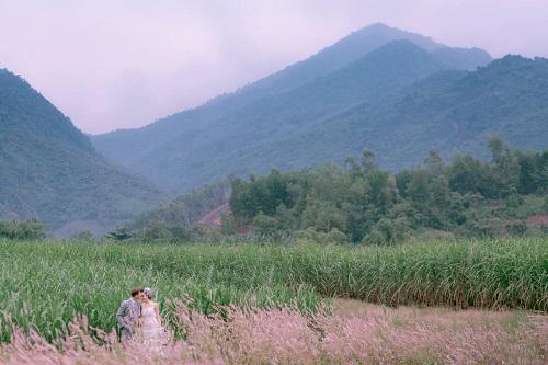 Đồng hoa mào gà, điểm chụp ảnh cưới mới tại Đà Nẵng - hình ảnh 1