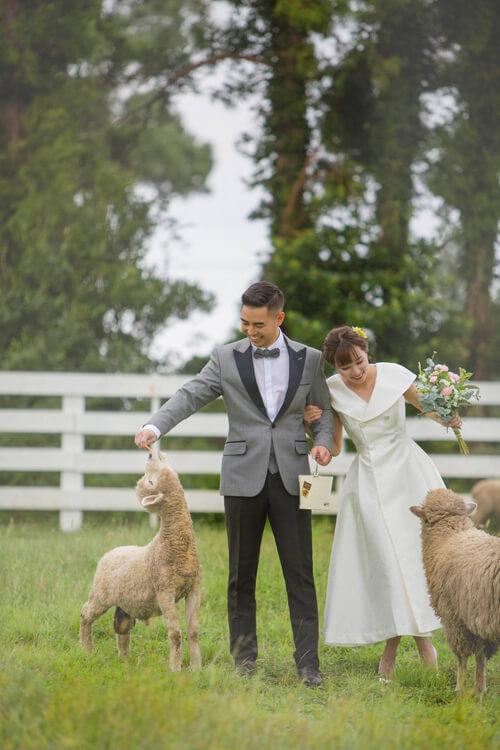 Ảnh cưới tại TP HCM và Jeju của cặp Việt kiều - hình ảnh 10