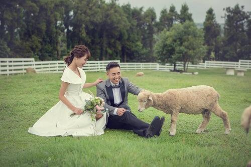 Ảnh cưới tại TP HCM và Jeju của cặp Việt kiều - hình ảnh 12