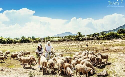 Những địa điểm chụp ảnh cưới xuyên Việt tuyệt đẹp không thể bỏ qua - hình ảnh 17